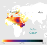 Y-DNA Haplogroup E (Source: 23andMe)