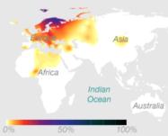 mtDNA Haplogroup U (Source: 23andMe)